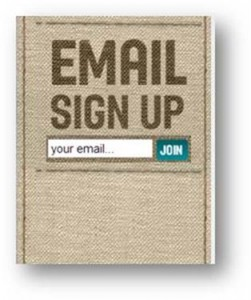 3 ways to grow your email subscribers list