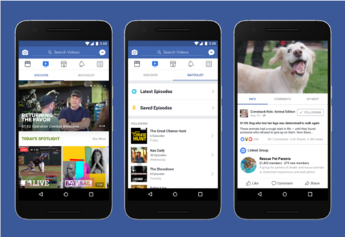 What to Watch for in the New Facebook Watch
